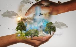Thumbnail for - Корпоративная социальная ответственность и устойчивое развитие