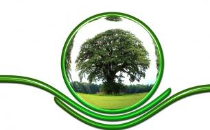 Thumbnail for - Как осуществлять на практике политику в области корпоративной социальной ответственности (КСО)