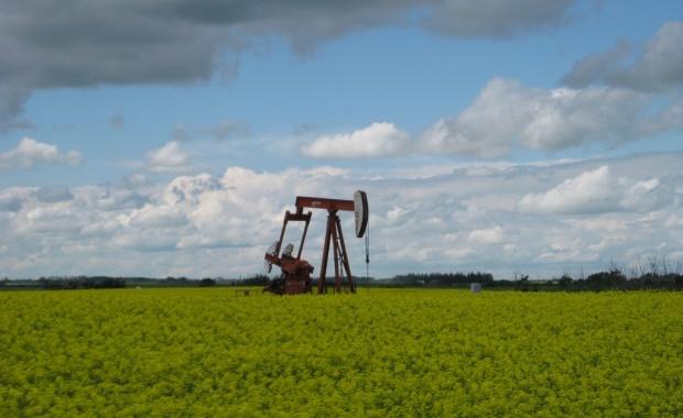 Thumbnail for - WWF России представил экологический рейтинг нефтегазовых компаний