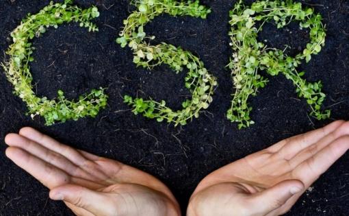 Thumbnail for - Круглый стол «Лучшие практики компаний в области устойчивого развития»