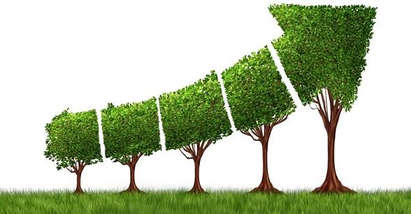 Thumbnail for - Национальный форум по устойчивом развитию