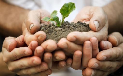 Thumbnail for - Круглый стол на тему «Экологическая ответственность, как элемент устойчивого развития бизнеса»